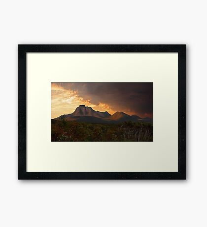 Bathed In Gold  Framed Print