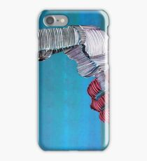 Lib 287 iPhone Case/Skin