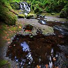 McCord Creek I by Tula Top