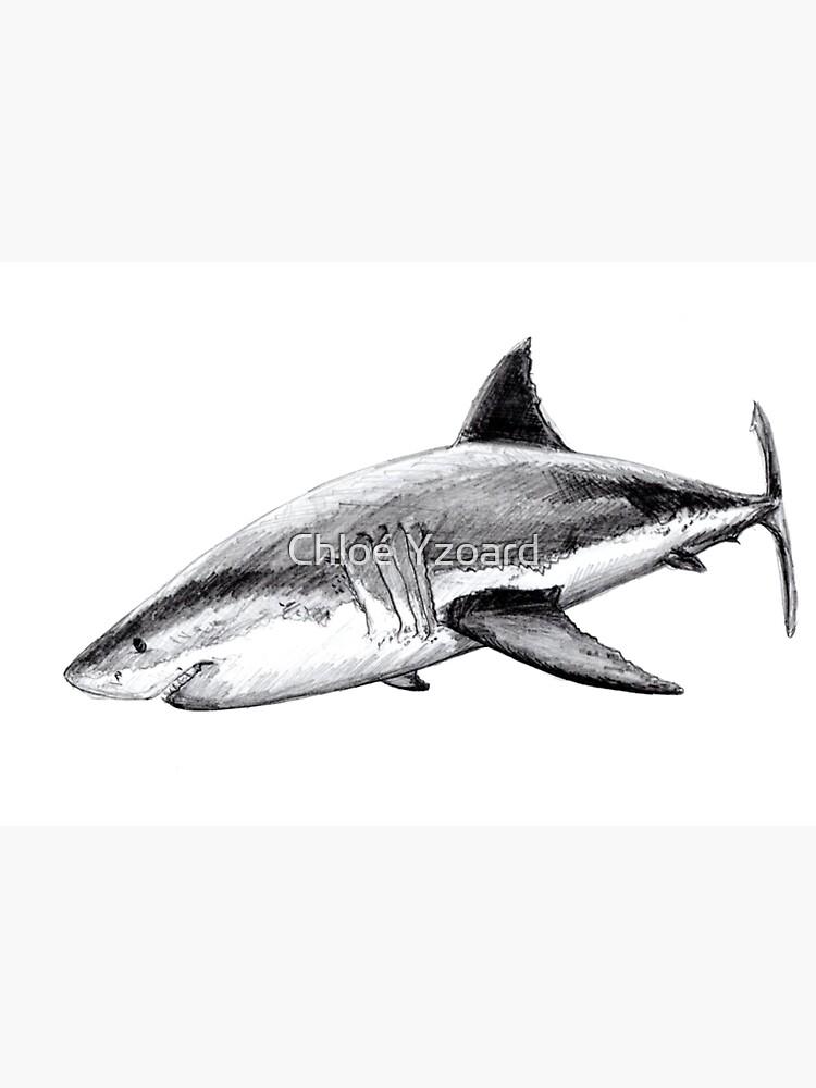 Great white shark by CHLOEYZOARD