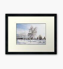 Hugged by snow (colour) Framed Print