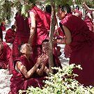 Debating Monks by Olivia  Gray