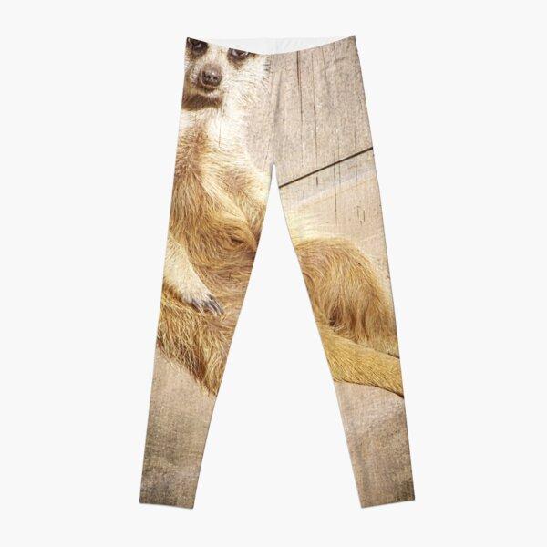 Funny Baby Meerkat Lounging, Grunge Leggings