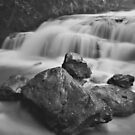 cascades in flood by peter  jackson