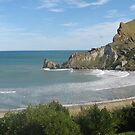 Castlerock - Castlepoint New Zealand by niggle