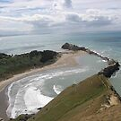 Castlerock ( 2 ) - Castlepoint New Zealand by niggle