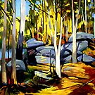 Sunlight and rocks by Guntis Jansons