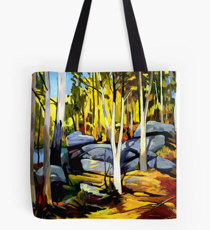 Sunlight and rocks Tote Bag