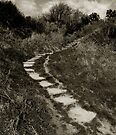 an Irish country path by ragman