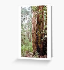 Strong Timber Greeting Card