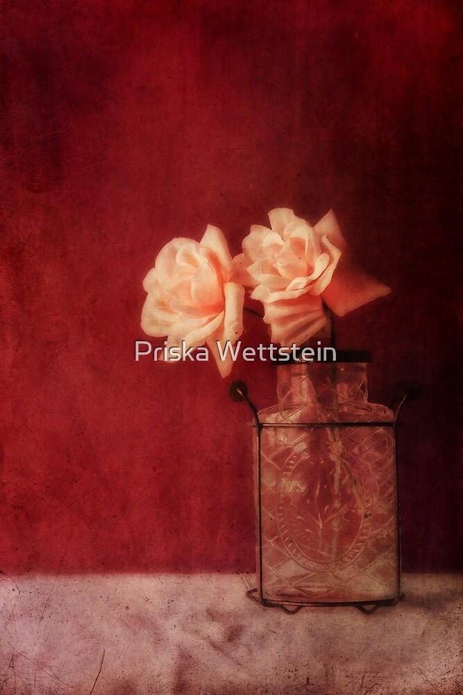 window light by Priska Wettstein