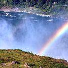 Niagara Falls Rainbow by David Owens