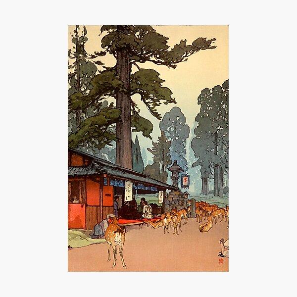 The Way to the Kasuga Shrine by Yoshida Hiroshi Photographic Print