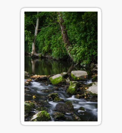 River Tolka, National Botanic Gardens, Dublin Sticker