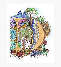 D - an illuminated letter Photographic Print