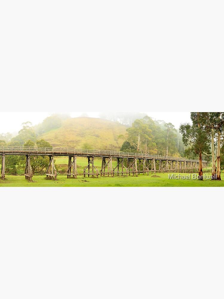 Foggy Trestle Bridge, Timboon, Victoria, Australia by Chockstone