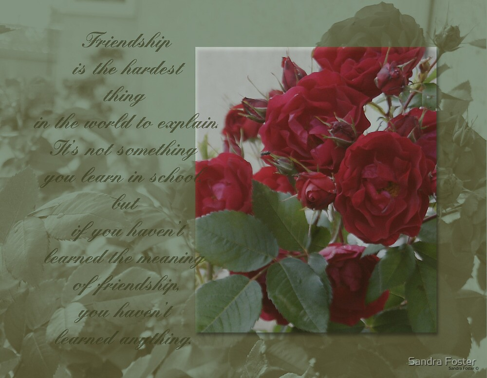 Friendship And Roses Quote by Sandra Foster