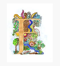 F - an illuminated letter Photographic Print