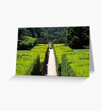 Path to the Woods Greeting Card