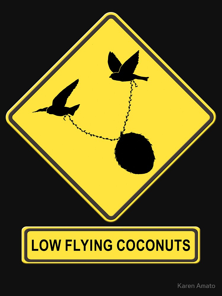 Low Flying Coconuts  by karenamato