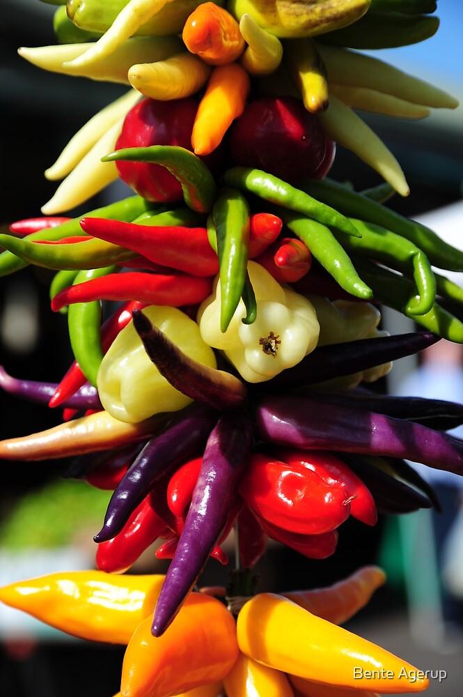 Pepper .. ? by julie08