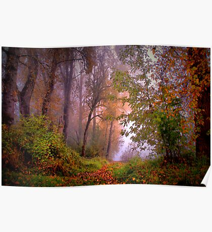 Fog On The Willamette River Poster