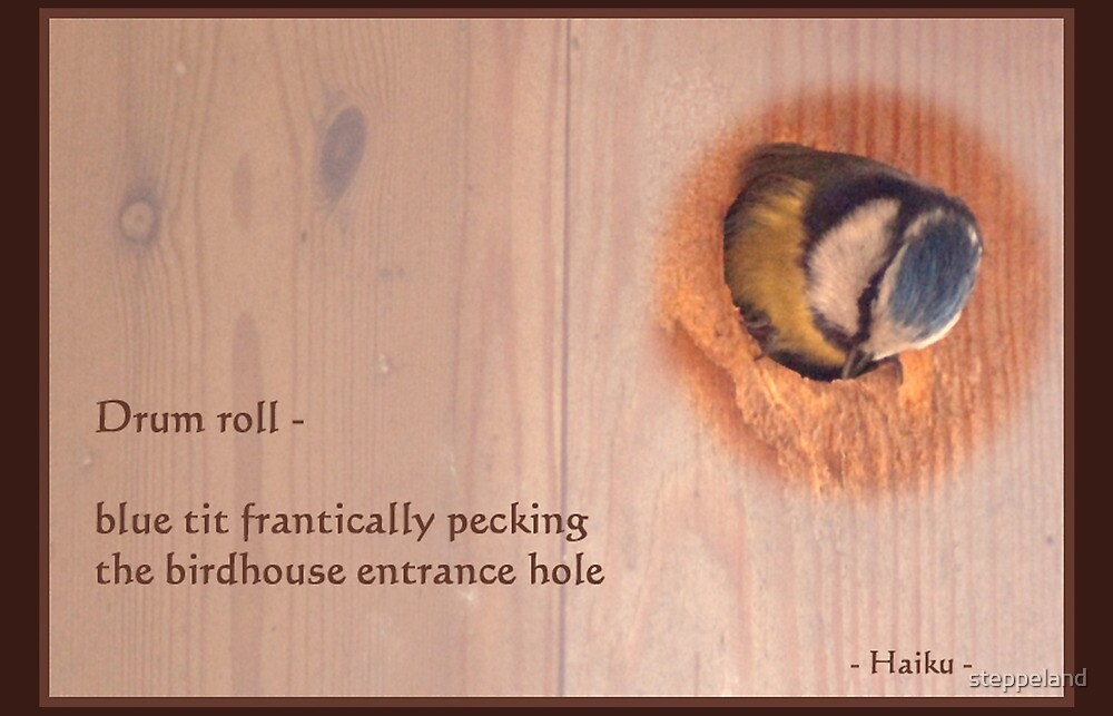 Haiku - Drum Roll by steppeland