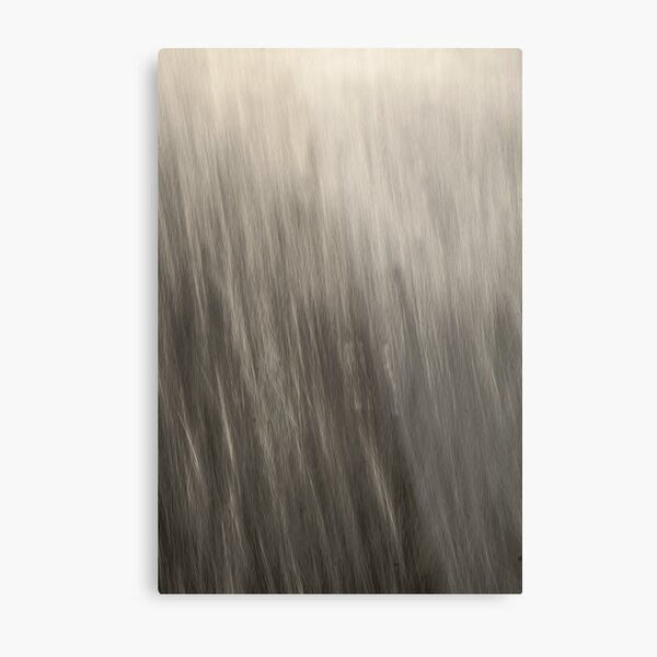 Can You Hear - An Abstract Expressionism - Kitty Todd Nature Preserve Metal Print