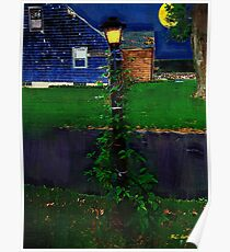 Blue House, Blue NIght Poster