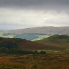 From Killearn to Dumgoyne by Susan Dailey