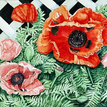 Red Poppies by clotheslineart
