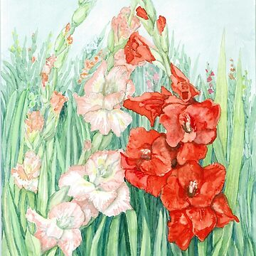 Pink n Red Gladiolas by clotheslineart
