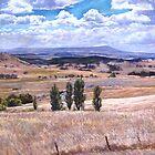 'High Camp Landscape'  by Lynda Robinson