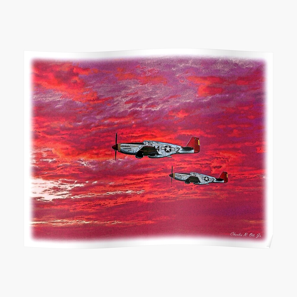 """""""Red Tails in the Sunset"""" Poster"""