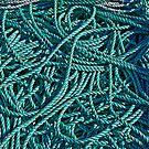 Enough Rope by TonyCrehan