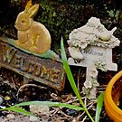 Rabbit Patch by Heidi  Jacobsen