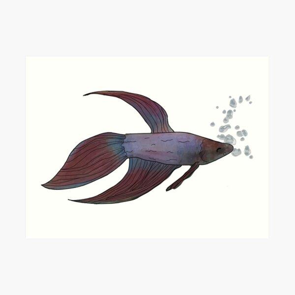 Fish with white Art Print