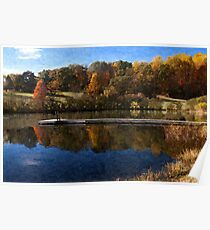 Fall Pond Poster