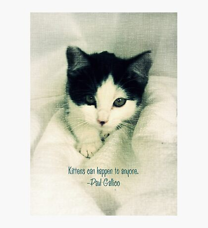Kittens Happen  Photographic Print