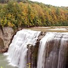 Letchworth Middle Falls by Kim Hart