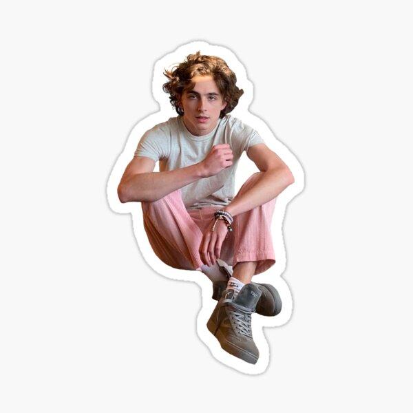 Timothée Chalamet Sticker