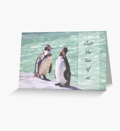 Penguin delight Greeting Card