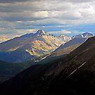 Longs Peak in Summer  by Robert Meyers-Lussier