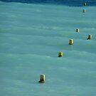 Buoys Will Be Buoys by Fara