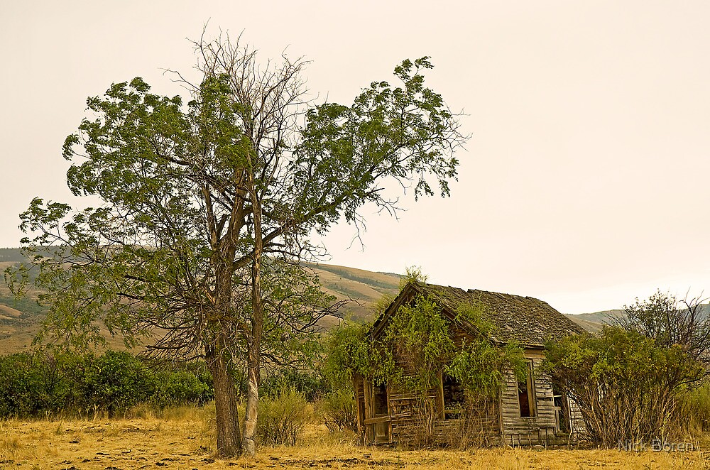 Abandoned 2 by Nick Boren