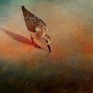 Sands of Time by Brenda Burnett
