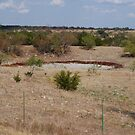 Texas Drought by TxGimGim