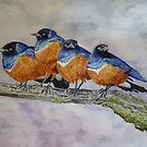 FOUR ANGRY BIRDIES - given as a gift by Marilyn Grimble