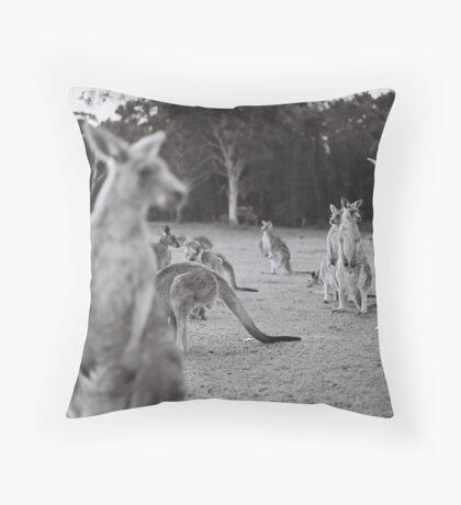 Le lapin et le kangourou Throw Pillow