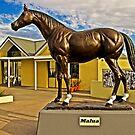 Malua - THE Most Versatile Australian Racehorse by TonyCrehan